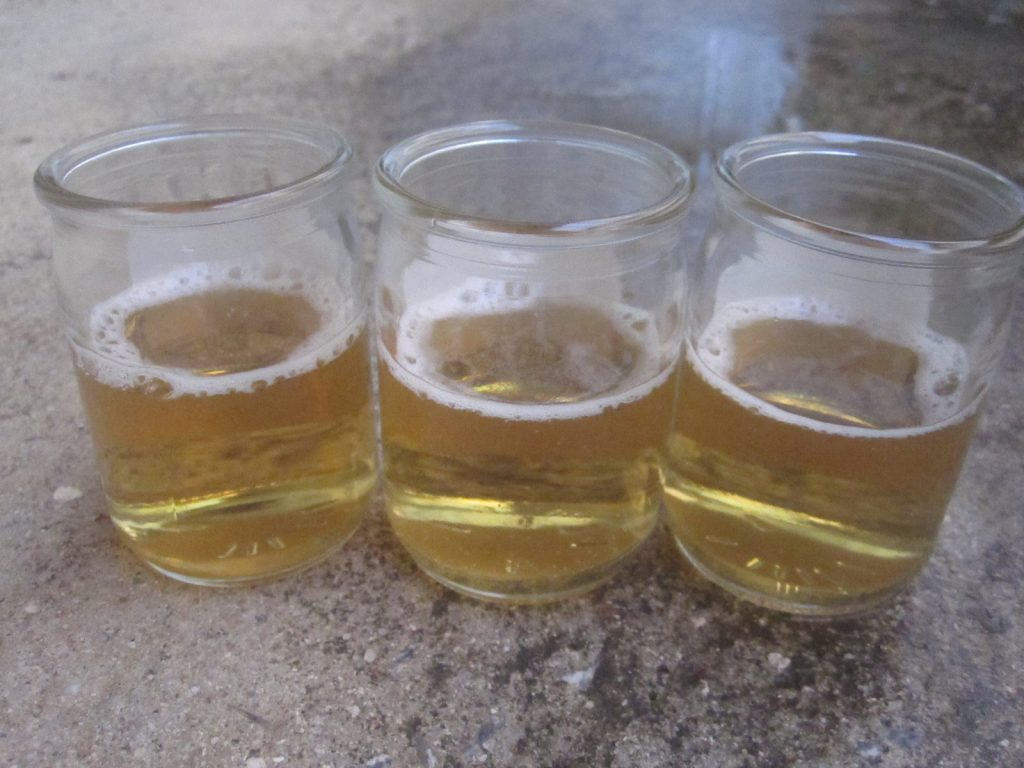 3本のガラス瓶容器にビール(発泡酒)を注いだカタツムリ・ビールトラップ