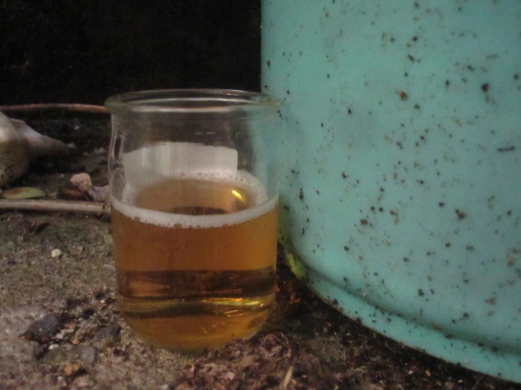 雨水が直接入らない屋外に設置したビールトラップ