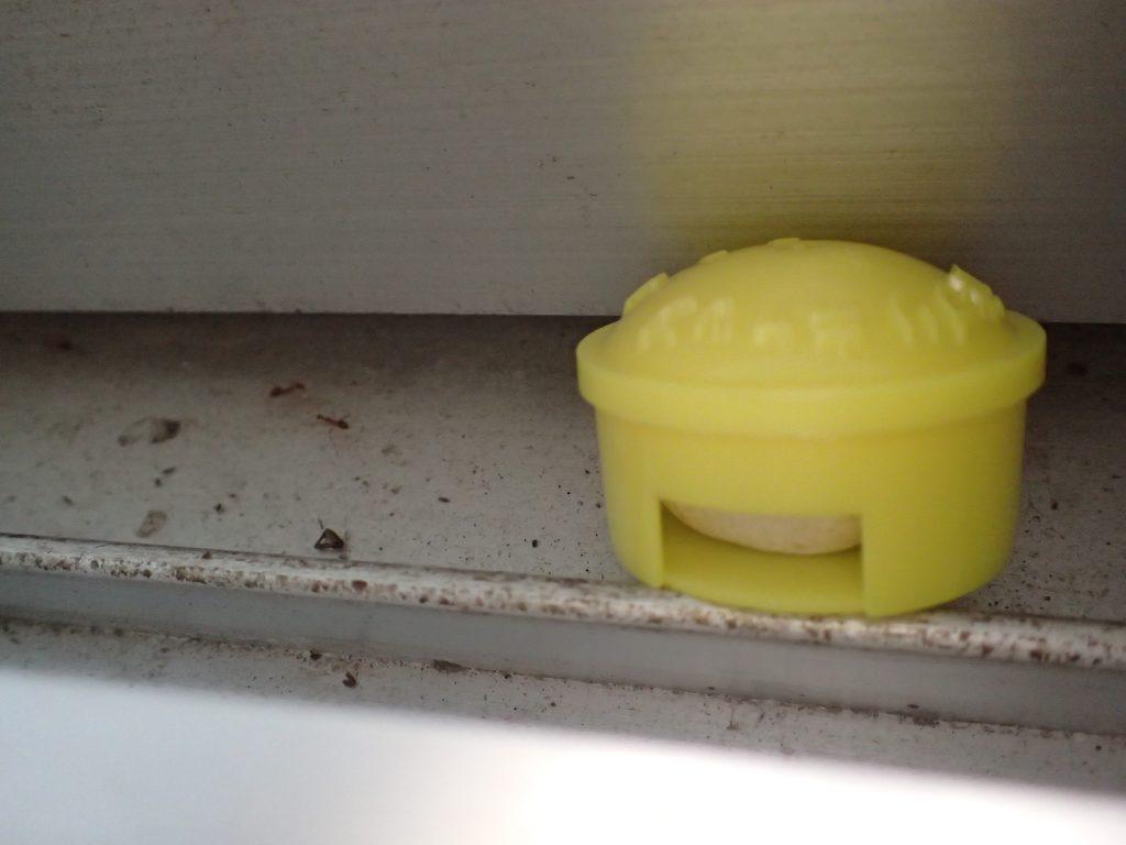 ピーナッツ風味のゴキブリ誘引殺虫剤ゴキキャップを設置!