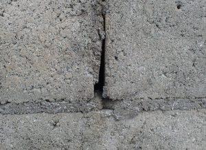 ブロック塀の壁の穴、隙間にも蟻やゴキブリが隠れている