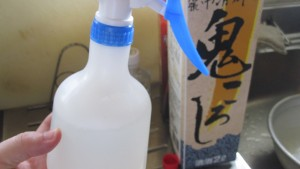日本酒で害虫カイガラムシ退治!? 昆虫はアルコールで駆除できるのか?