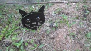 野良猫の通り道に近い地面に突き刺して設置