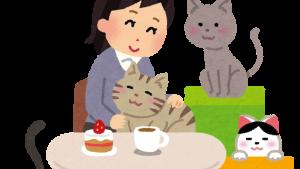 猫カフェでくつろぐ客