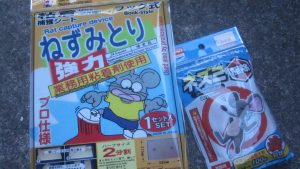 ネズミの駆除・退治はDAISO(ダイソー)の粘着捕獲シート&殺鼠剤の200円コンビで可能だ!糞(ウンチ)と鳴き声にサヨナラ!